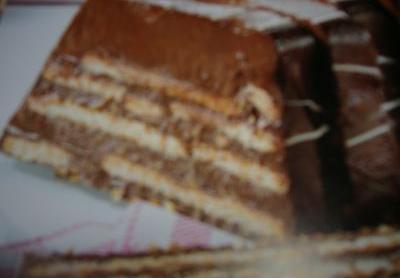 Csokoládékérges kekszes fatörzs