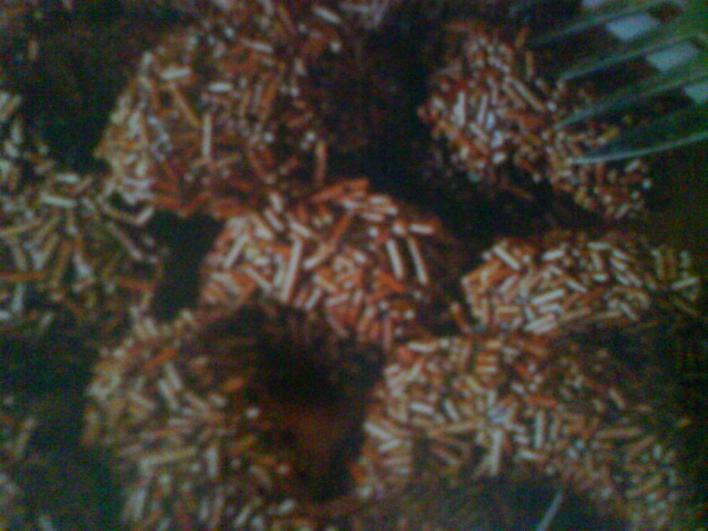 Ördögpirula