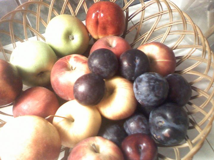 Gyümölcsleves gazdagon elkészítés 1. lépés képe