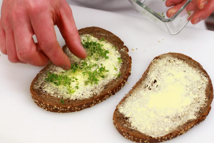 Savanyú káposztás gyros szendvics elkészítés 3. lépés képe